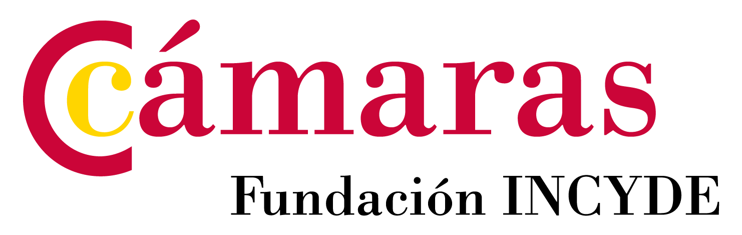 Logo 048 Fundacion Incyde 300